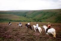 exmoor riding 2