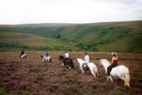 exmoor riding 2