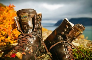 hiking shoes 99854
