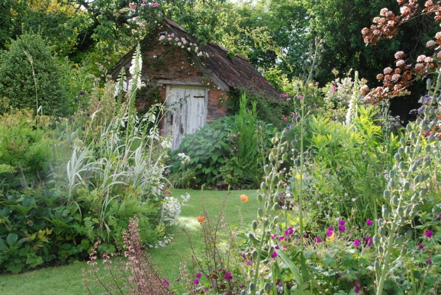 Visit to Elworthy Cottage Plants (Garden Club)