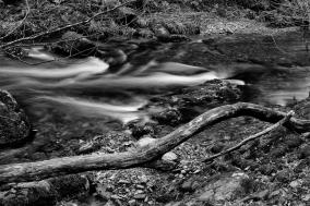 Horner Water