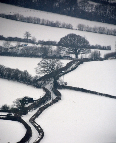 Hedgerows and Lanes